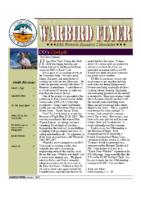Warbird Flyer 2007-01