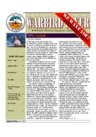 Warbird Flyer 2007-04