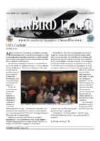 Warbird Flyer 2009-01